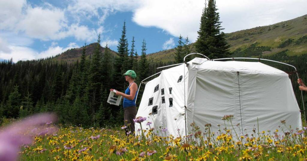 A photo of Trudi Lynn Smith (taken by Lynette Hiebert) showing Smith working with a group to perfectly re-locate an archival photograph and position the Portable Camera Obscura on that spot.